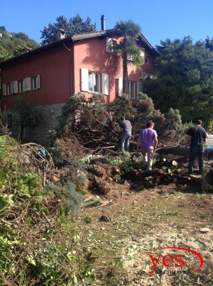 YesMultiservice bonifiche a Cureggia.